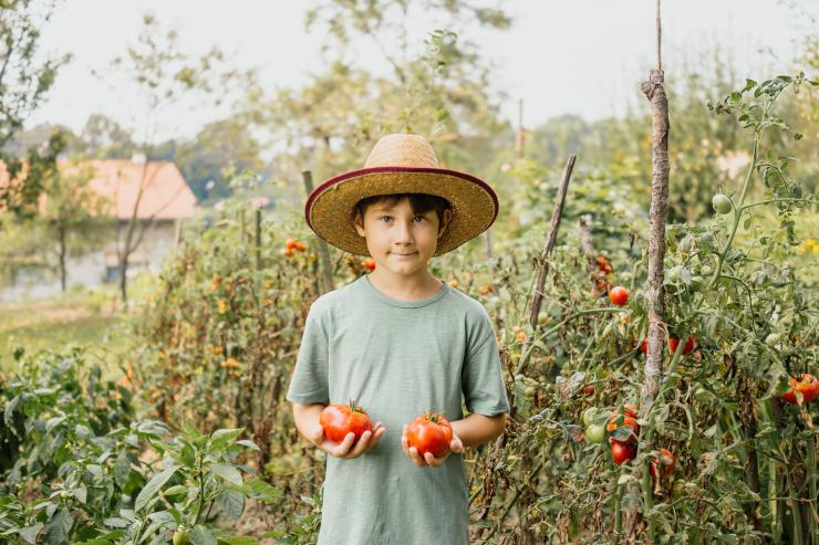 Entretenir son jardin sans produit chimique