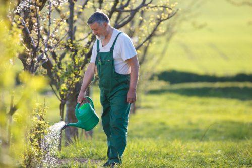 arroser et économiser eau dans le jardin